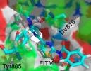 Imagen de uno de los fármacos simulados