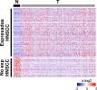 lncRNAs específicos de cáncer de cabeza y cuello