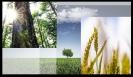 SensoScopio - Eficiencia energética, agricultura y medioambiente